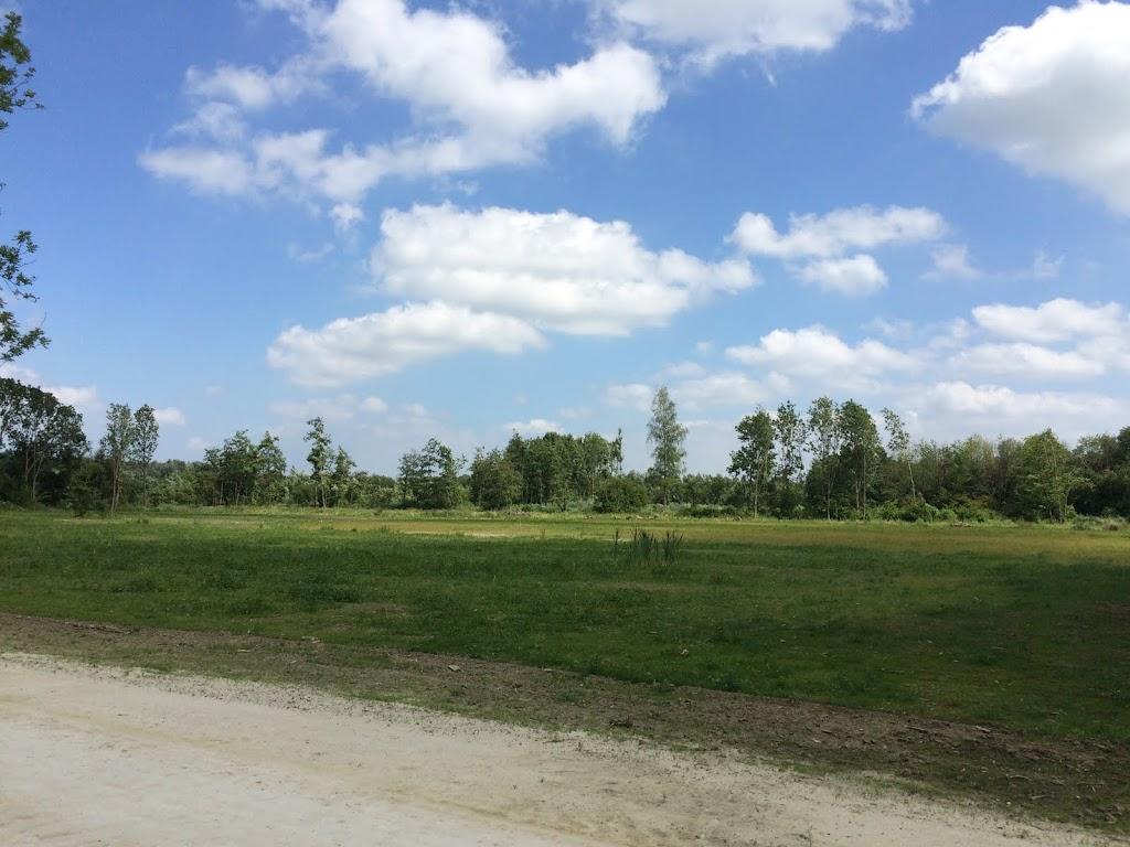 2015 - Scouting Landgoed - IMG_7898.JPG