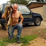 Les inondations au Queensland : collecte des serpents