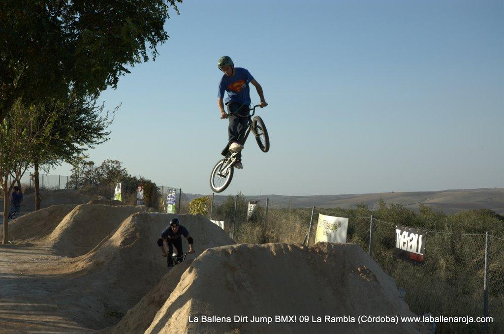 Ballena Dirt Jump BMX 2009 - BMX_09_0094.jpg