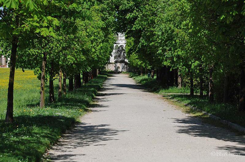 Villa Pisani 50