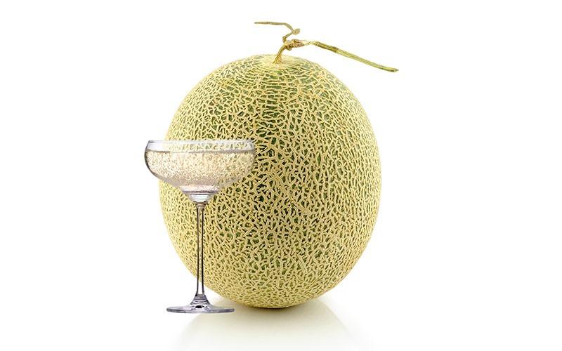 [melon1%5B2%5D]