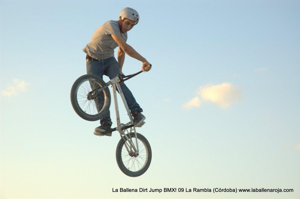 Ballena Dirt Jump BMX 2009 - BMX_09_0145.jpg