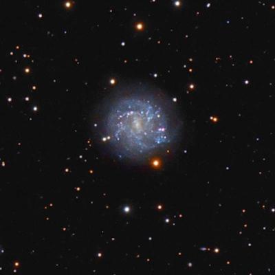 NGC2500