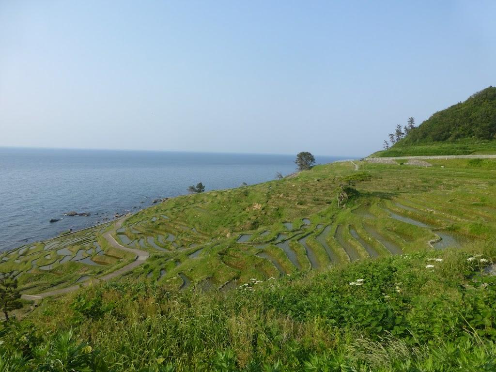 白米千枚田の景色