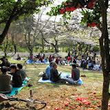 2014 Japan - Dag 7 - max-IMG_1849-0106.JPG