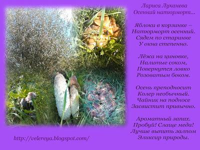 Осенний натюрморт...