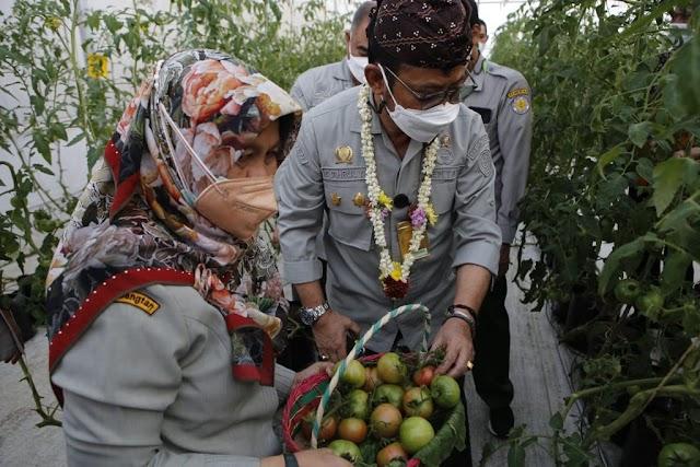 Kementan Kerjasama dengan Mitra Usaha dan Perbankan, Dukung Petani Milenial Pacu Pertanian Melesat
