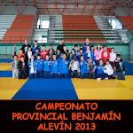 CAMPEONATO PROVINCIAL BENJAMÍN-ALEVÍN