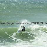 _DSC8022.thumb.jpg