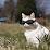Firstname Lastname's profile photo