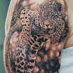 Leopard #4