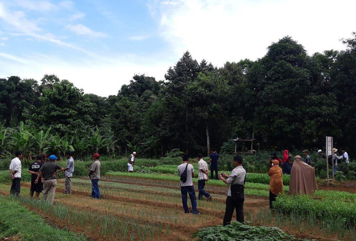 BBPP Batangkaluku Bersama P4S KWT An-Nisa Ghoniy Bone Selenggarakan Pemagangan Budidaya Bawang Merah Bagi Petani