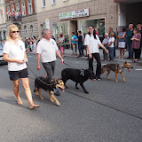 Volksfestumzug BPSV Hof 2015 - P7240129.JPG