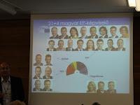 16 Magyar kepviselet az EP-ben.jpg