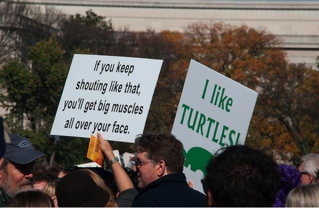 Funny sign photo picture - I like turtles