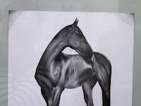 11 Az egyik kecses ló az Ipoly Galéria falán.jpg