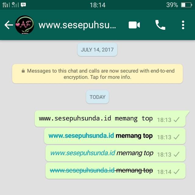 chat WA tebal, miring, coret