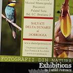 Exhibitions by Daniel Petrescu