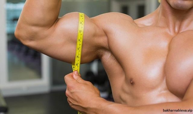 Tips to Build Bigger Biceps
