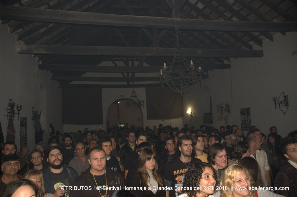 A TRIBUTOS 1er Festival Homenaje a Grandes Bandas del Rock 2010 - DSC_0210.jpg