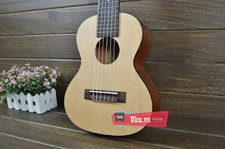 mua bán đàn guitarlele cỡ nhỏ đàn 28 icnh