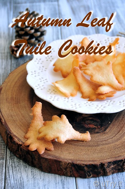 How to Make Autumn Leaf Tuile Cookies  http://uTry.it