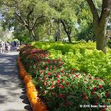 10-26-14 Dallas Arboretum - _IGP4322.JPG
