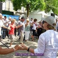 FIL 2013 Terrasse Bretagne (5).JPG