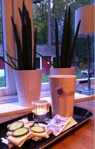 Frukost hos Liv i Villan