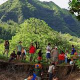 06-26-13 National Tropical Botantial Gardens - IMGP9478.JPG