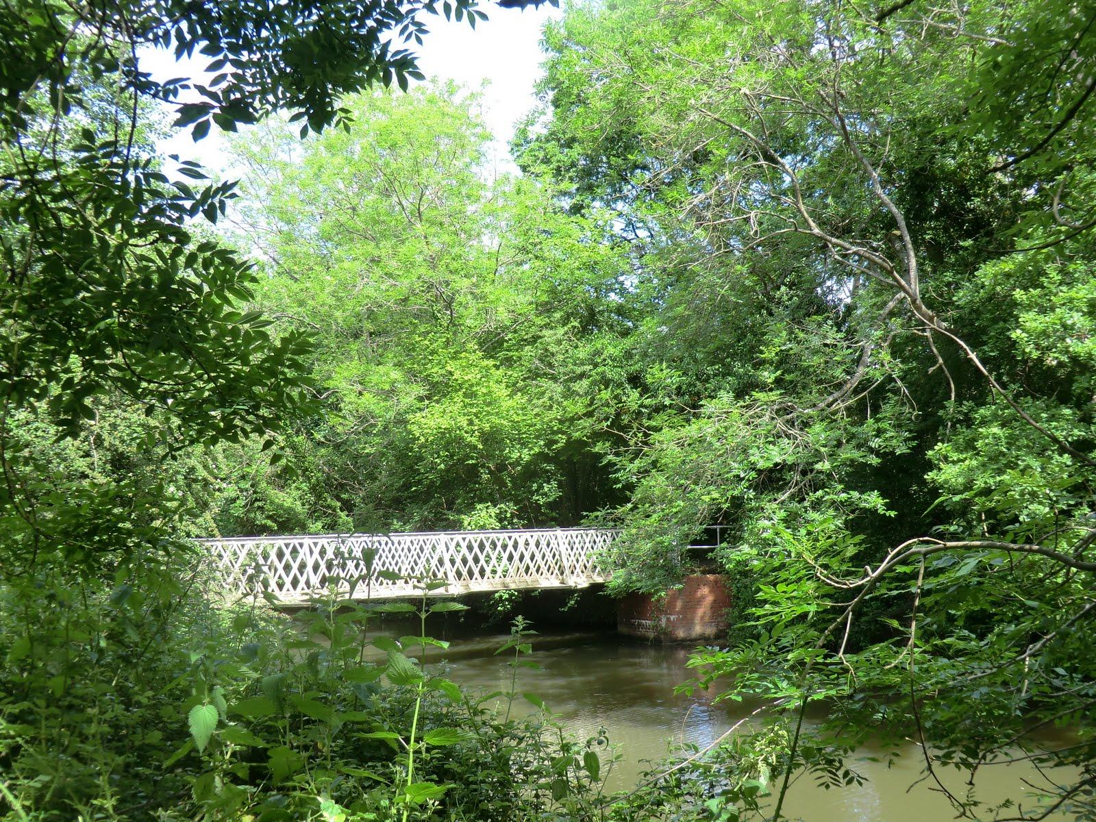 CIMG8598 Lucifer Bridge, Haysden Country Park