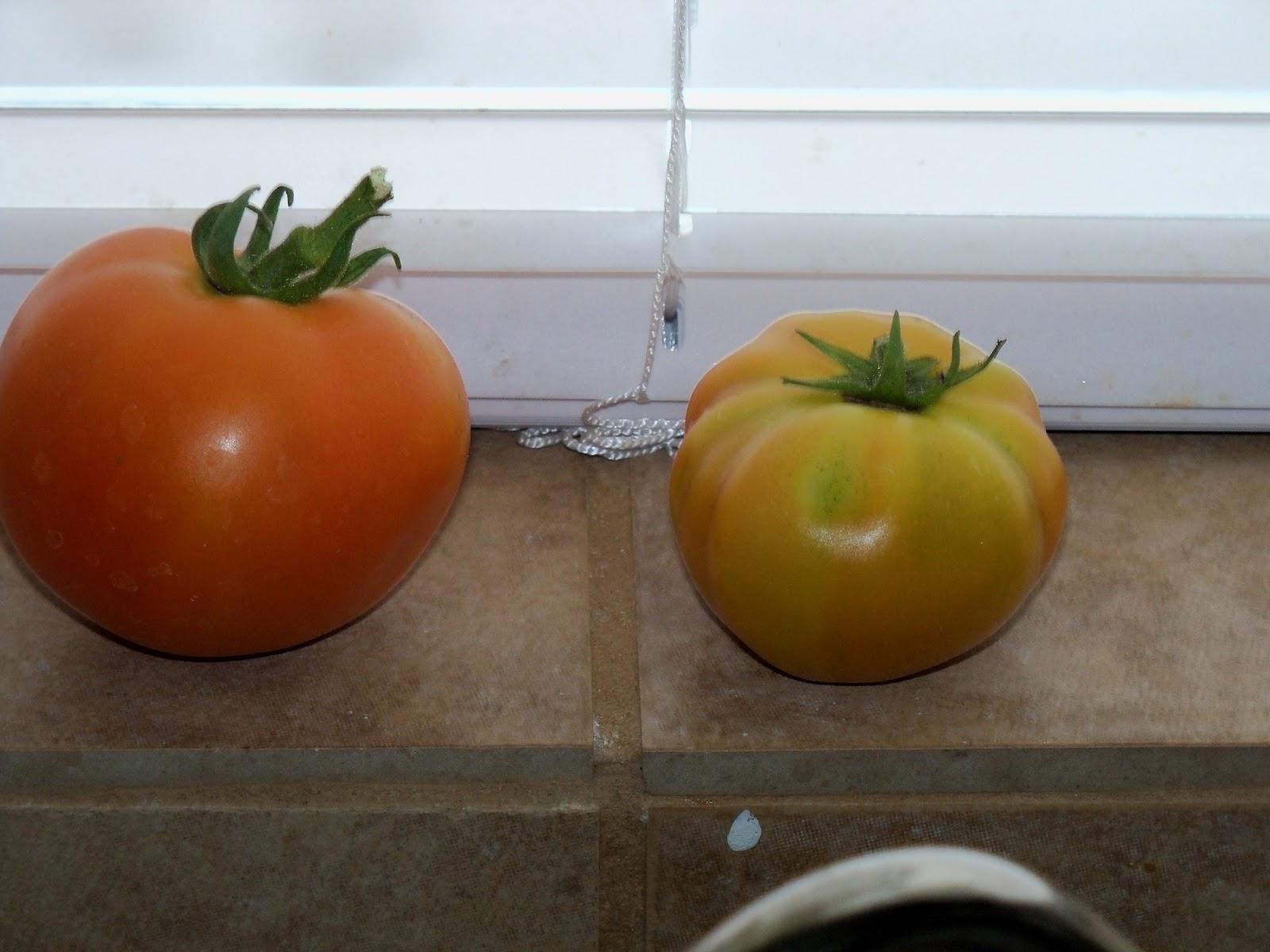 Gardening 2012 - 115_2466.JPG