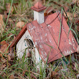 birdhouse_MG_2481-copy.jpg