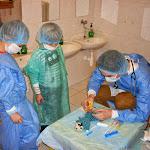 Medvídkova nemocnice 3.3. 2015 3. třída
