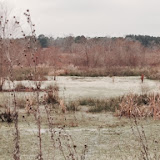 Anderson Creek Hunting Habitat - photo33.JPG