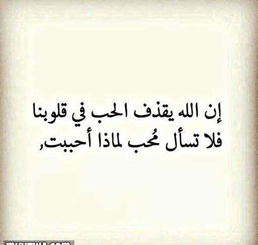 Mohamed raad