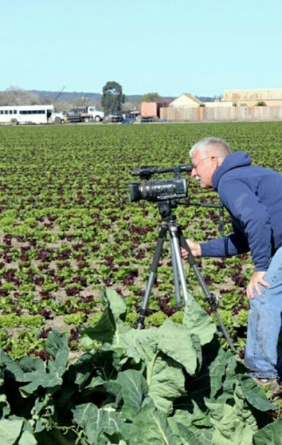 How to make a Career in Agronomy