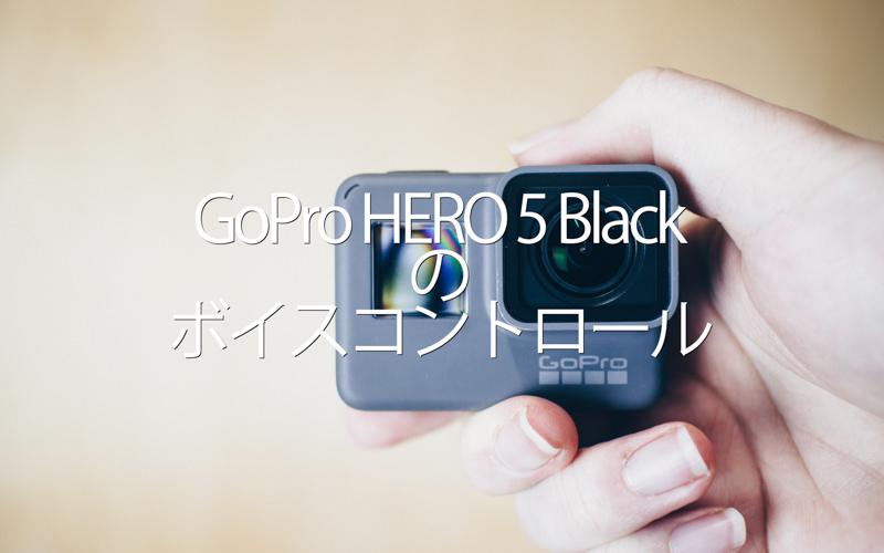 Goprohero5voice