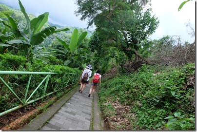 Sendang Gile & Tiu Kelep Waterfall