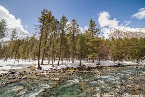 Magnificent Naltar Valley