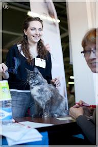 cats-show-25-03-2012-fife-spb-www.coonplanet.ru-008.jpg