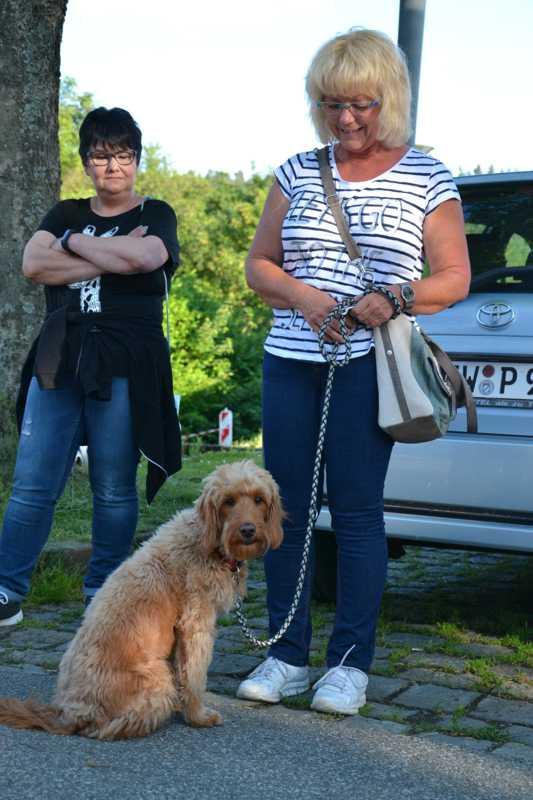 7. Juni 2016: On Tour in Neustadt a.d. Waldnaab - DSC_0436.JPG
