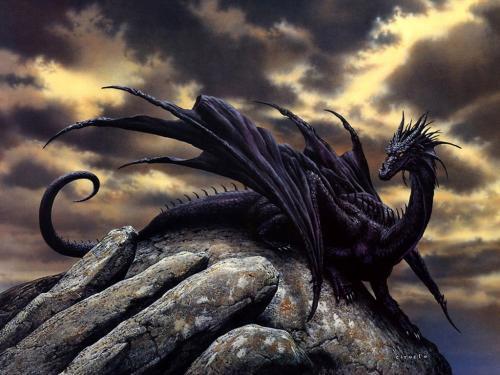 Anime Dragon, Dragons