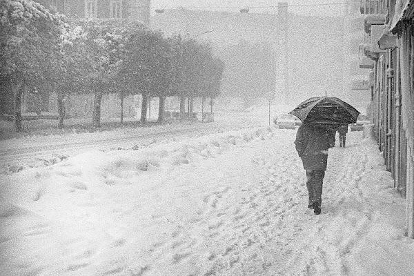 sotto la neve di rino_savastano