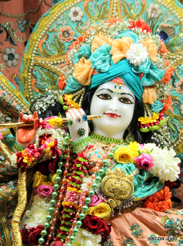ISKCON Juhu Sringar Deity Darshan on 19th Jan 2017 (7)