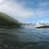 DSC_1645.thumb.jpg