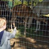 Blessington Farms - 116_4987.JPG