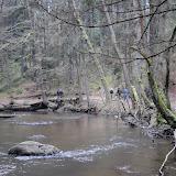 20140101 Neujahrsspaziergang im Waldnaabtal - DSC_9838.JPG
