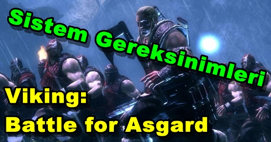Viking: Battle for Asgard Sistem Gereksinimleri