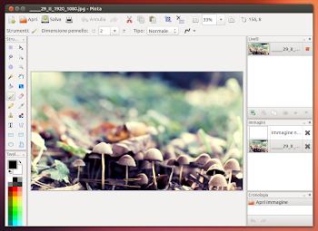 Pinta 1.5 su Ubuntu 13.04 Raring